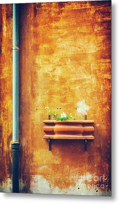 Metal Print featuring the photograph Wall Gutter Vase by Silvia Ganora
