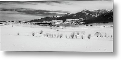 Metal Print featuring the photograph Wallowa Mountains by Cat Connor