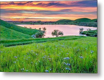Metal Print featuring the photograph Wally Baskets Above Contra Loma  by Marc Crumpler