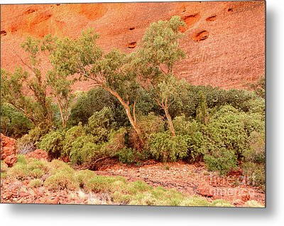 Metal Print featuring the photograph Walpa Gorge 03 by Werner Padarin