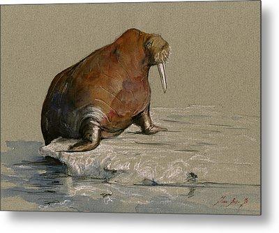 Walrus On Ice Metal Print