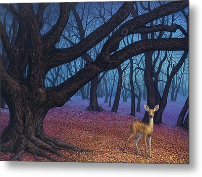 Wanderer Metal Print by James W Johnson