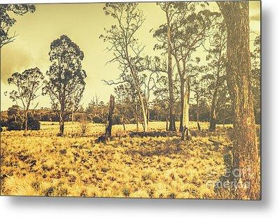 Waratah Tasmania Bush Landscape Metal Print