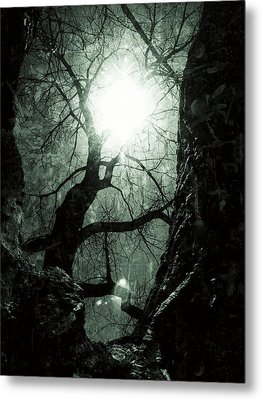 Warm Yet Cold Metal Print
