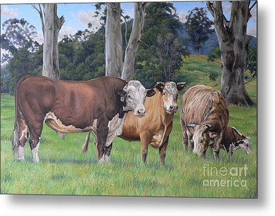 Warrawillah Cattle Metal Print by Louise Green