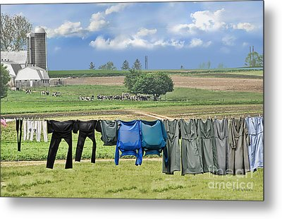 Wash Day In Amish Country Metal Print by Dyle   Warren