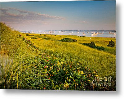 Watch Hill Sunrise Metal Print by Susan Cole Kelly