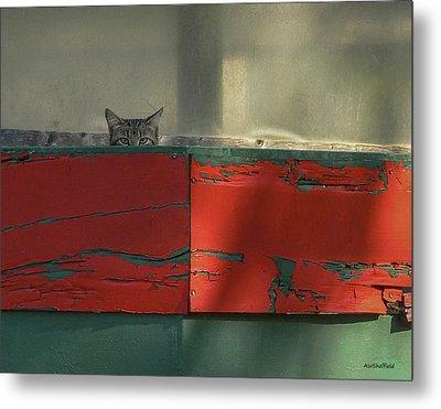 Watchful Cat Metal Print