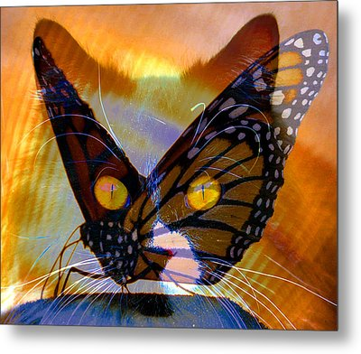 Metal Print featuring the photograph Watching Butterlies by David Lee Thompson