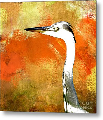 Watching Metal Print by LemonArt Photography