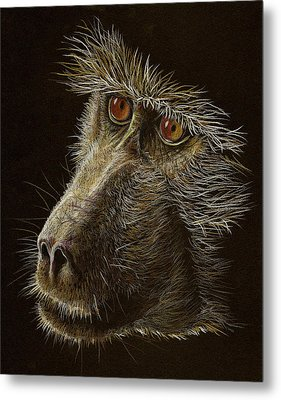 Metal Print featuring the drawing Watching You by Heidi Kriel
