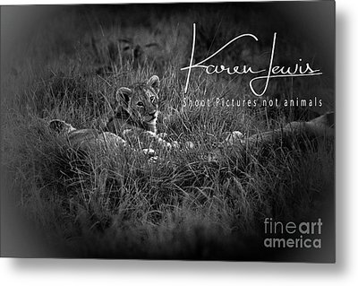Metal Print featuring the photograph Watching You Watching Me by Karen Lewis