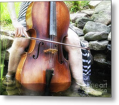 Water Cello  Metal Print by Steven Digman