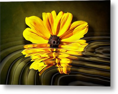 Metal Print featuring the photograph Water Flower by Gary Smith