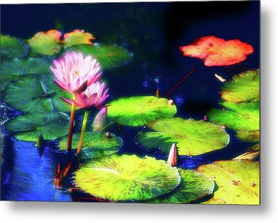 Metal Print featuring the photograph Water Lilies by Harry Spitz