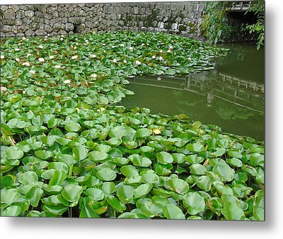 Water Lilies In The Moat Metal Print