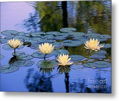 Water Lilies Metal Print by Lisa L Silva