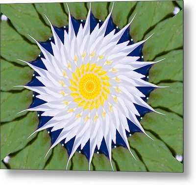 Metal Print featuring the photograph Water Lily Kaleidoscope by Bill Barber