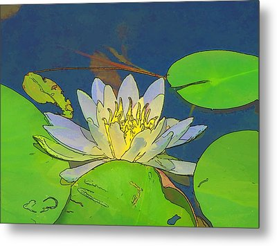 Metal Print featuring the digital art Water Lily by Maciek Froncisz