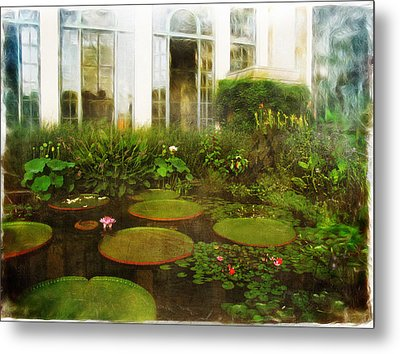 Water Lily Pond Metal Print by John Rivera