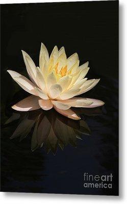 Water Lily Reflected Metal Print by Sabrina L Ryan