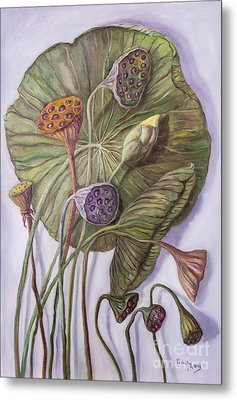 Water Lily Seed Pods Framed By A Leaf Metal Print