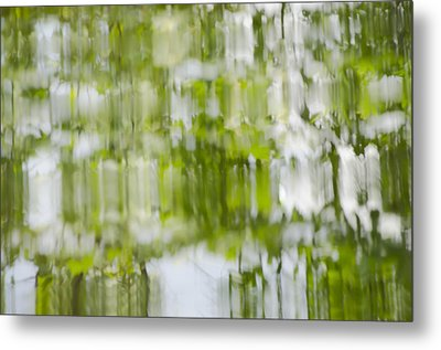 Metal Print featuring the photograph Water Reflections by Wanda Krack