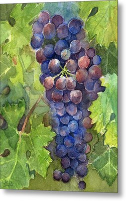 Watercolor Grapes Painting Metal Print by Olga Shvartsur