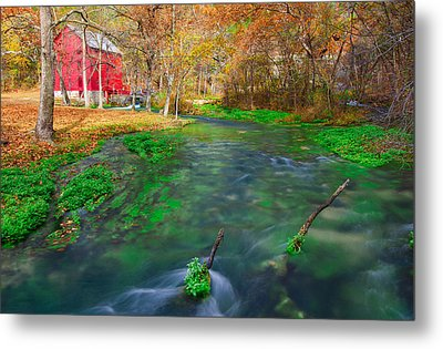 Watercress At Alley Spring  Metal Print