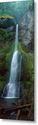 Waterfall In Olympic National Rainforest Metal Print
