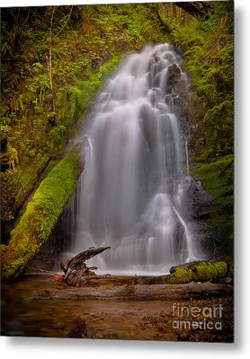 Waterfall Showers Metal Print