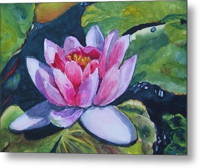 Waterlily II Metal Print
