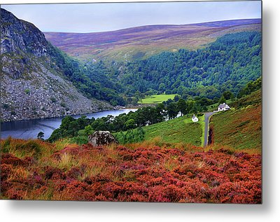 Metal Print featuring the photograph Way Home. Wicklow. Ireland by Jenny Rainbow