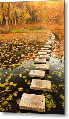 Way In The Lake Metal Print by Evgeni Dinev