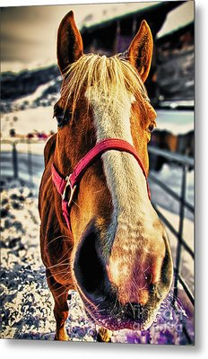 Way-out Metal Print by Alessandro Giorgi Art Photography