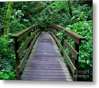 We All Have Bridges To Cross Metal Print by PJ  Cloud