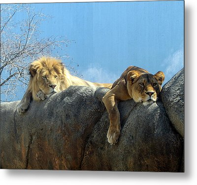 We Are Tired Metal Print