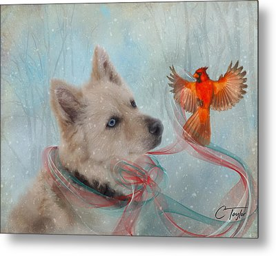 We Can All Get Along Metal Print by Colleen Taylor