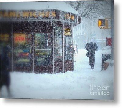 We Sell Flowers - Winter In New York Metal Print by Miriam Danar