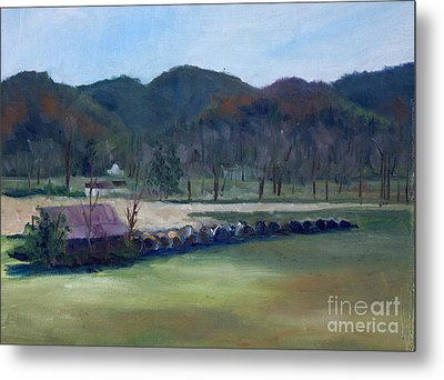 Wears Valley, Tn Metal Print by Janet Felts