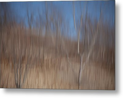 Weary Reflections Metal Print by Karol Livote