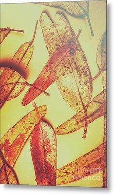 Weathered Autumn Leaves Metal Print
