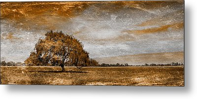 Weathered Metal Print by Az Jackson