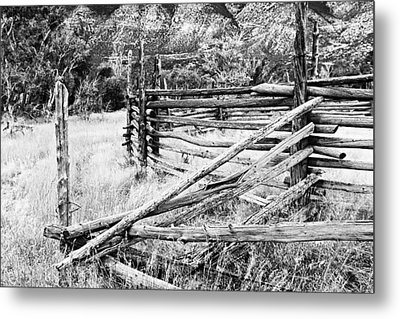 Weathered Fence Metal Print by Larry Ricker