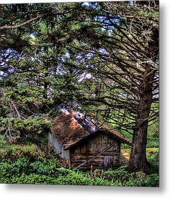 Weathered Shed Metal Print by David Patterson