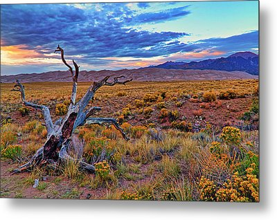 Metal Print featuring the photograph Weathered Wood And Dunes - Great Sand Dunes - Colorado by Jason Politte