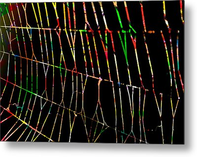 Web Metal Print by Don Gradner