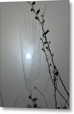 Metal Print featuring the photograph Web Glow by Peg Urban