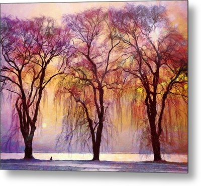 Weeping Willow Oh Weep No More Metal Print