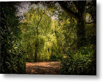 Metal Print featuring the photograph Weeping Willow by Ryan Photography
